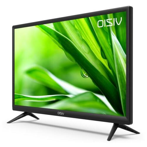 VIZIO Class 720p 60Hz LED D24hn-E1 HDTV HDMI Flat Screen/Panel
