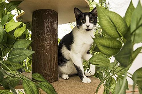 CatHaven Cat Condo Tree House Tower for Climbing, Scratching, Relaxing 60 high